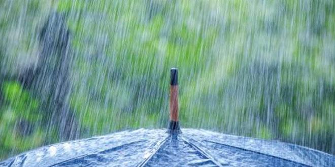 pioggia bari